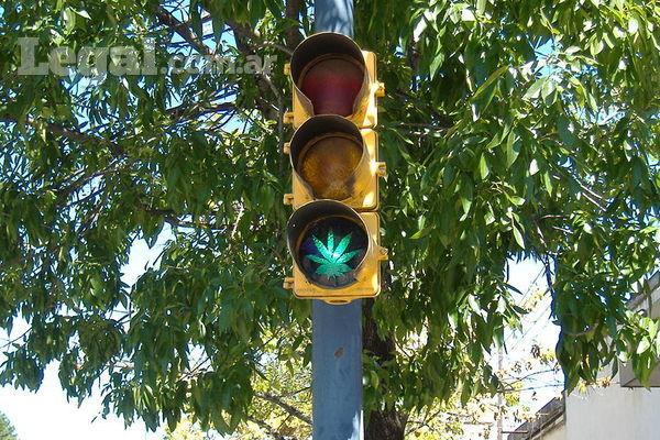 Cannabis en Argentina